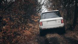 Privilege Vehicle Loans